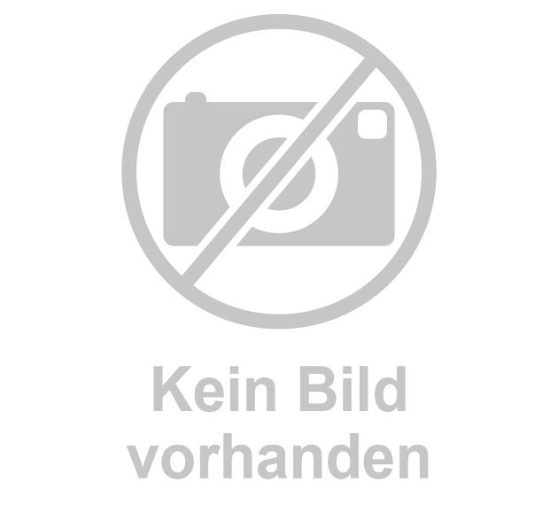 Akupunkturfigur männlich